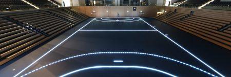 BallsportArena Handball lines -dark2