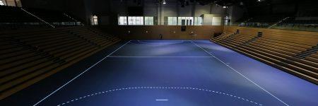 BallsportArena Handball2